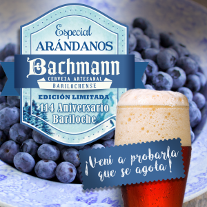 Bachmann_cerveza-arandanos2